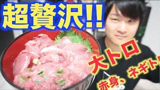 豪華!!さばいたマグロで超贅沢マグロ丼を作るよ!!
