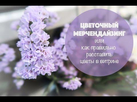 Цветочный мерчендайзинг 🌸 или Как правильно расставить цветы  в витрине