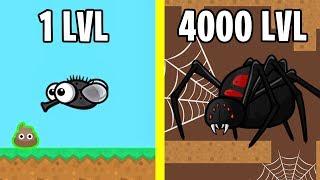 Spider Evolution! FlyOrDie.io New io Game