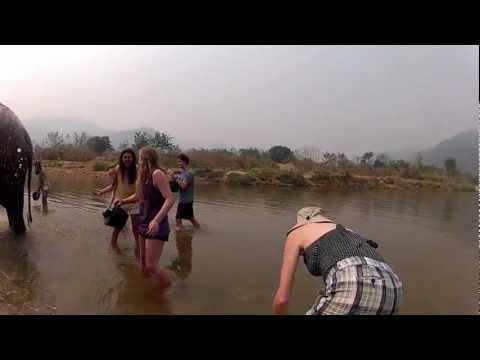 2012-02 Trip - Thailand washing the elephants