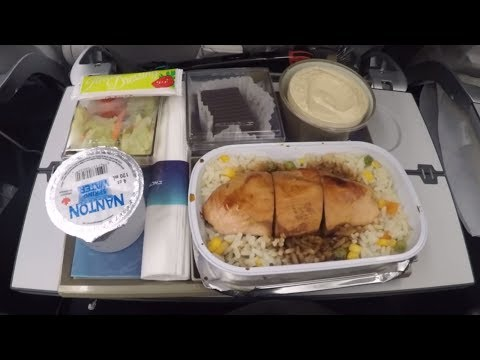 Economy Class Airplane Seat Review - El Al