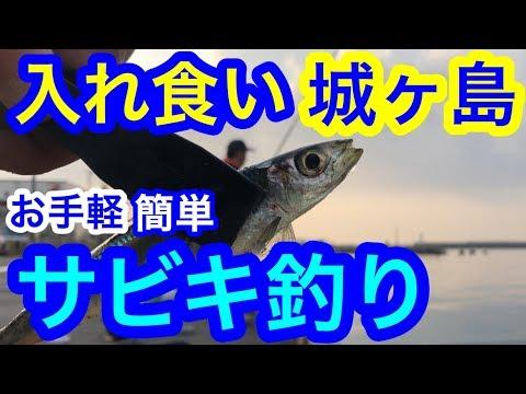 お手軽簡単サビキ釣り【三浦半島 釣り】
