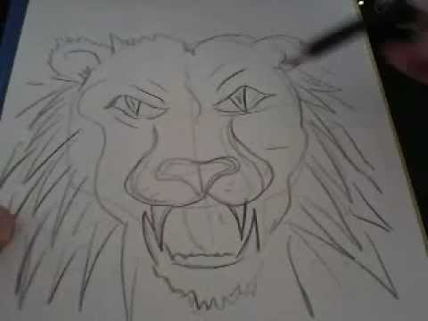 How to draw a lions face