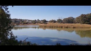 Beaulieu Bird Sanctuary, Midrand✔