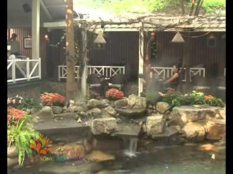 Quán Cafe sân vườn Thú Vị - Vui Sống Mỗi Ngày