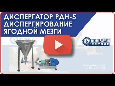 Диспергирование ягодной мезги (пульпы) на диспергаторе РДН-5(7,5кВт) - Пищмашсервис