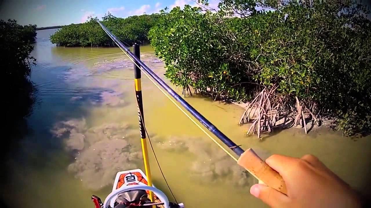 Kayak fishing in everglades for redfish youtube for Fishing in the everglades