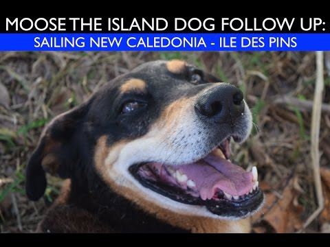 Ile des Pins   Sailing   New Caledonia