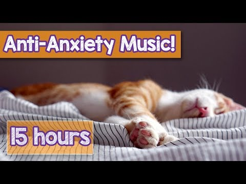 Calming Music For Cats With Anxiety! Deep Soothing Music For Anxious, Ill And Stressed Cats! (2018)