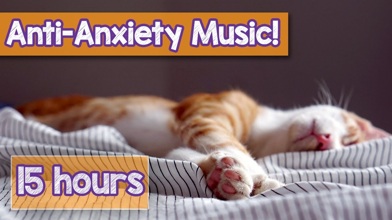 Calming Music For Cats With Anxiety Deep Soothing Music For Anxious Ill And Stressed Cats 2018 Youtube