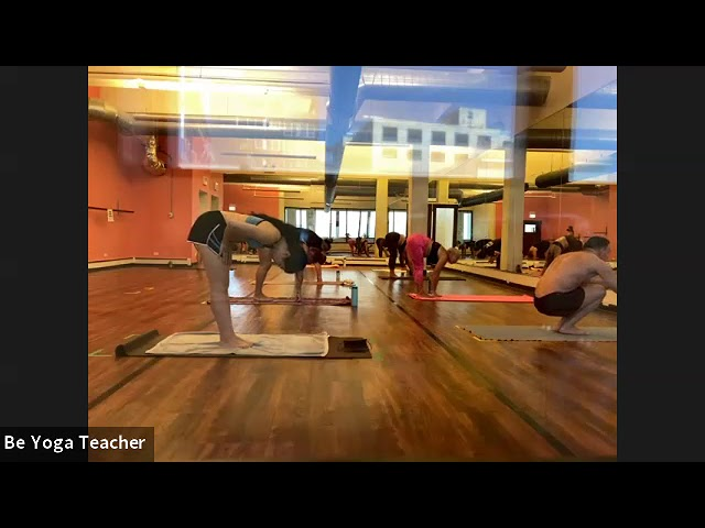 Cat 90 Minute Yoga Class Be Yoga Andersonville