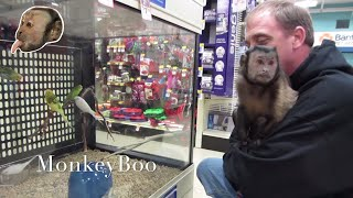 Monkey Visits Pet Smart!