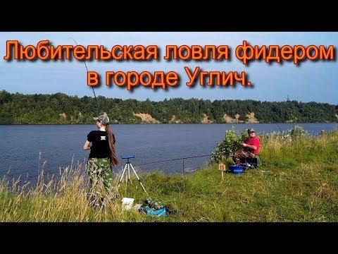 Любительская ловля фидером в городе Углич.
