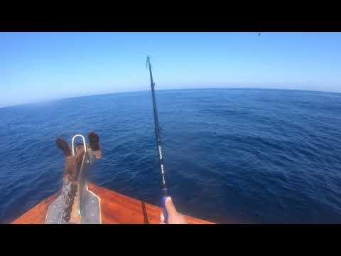 Off Shore Fishing On The San Diego. (seaforth Landing)