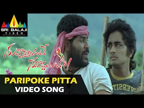 Nuvvostanante Nenoddantana Video Songs | Paripoke Pitta Video Song | Siddharth