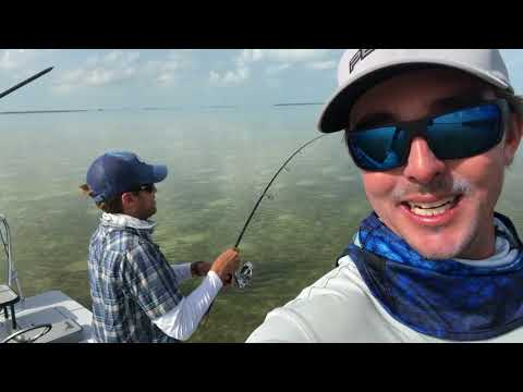 Tarpon And Bonefish In The Florida Keys