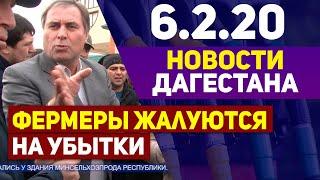 Новости Дагестана 6.2.20