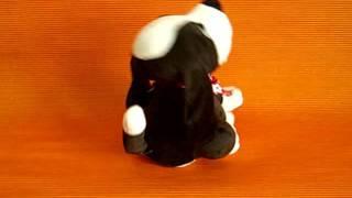 74059 собака черно-белая. www.kars.ru