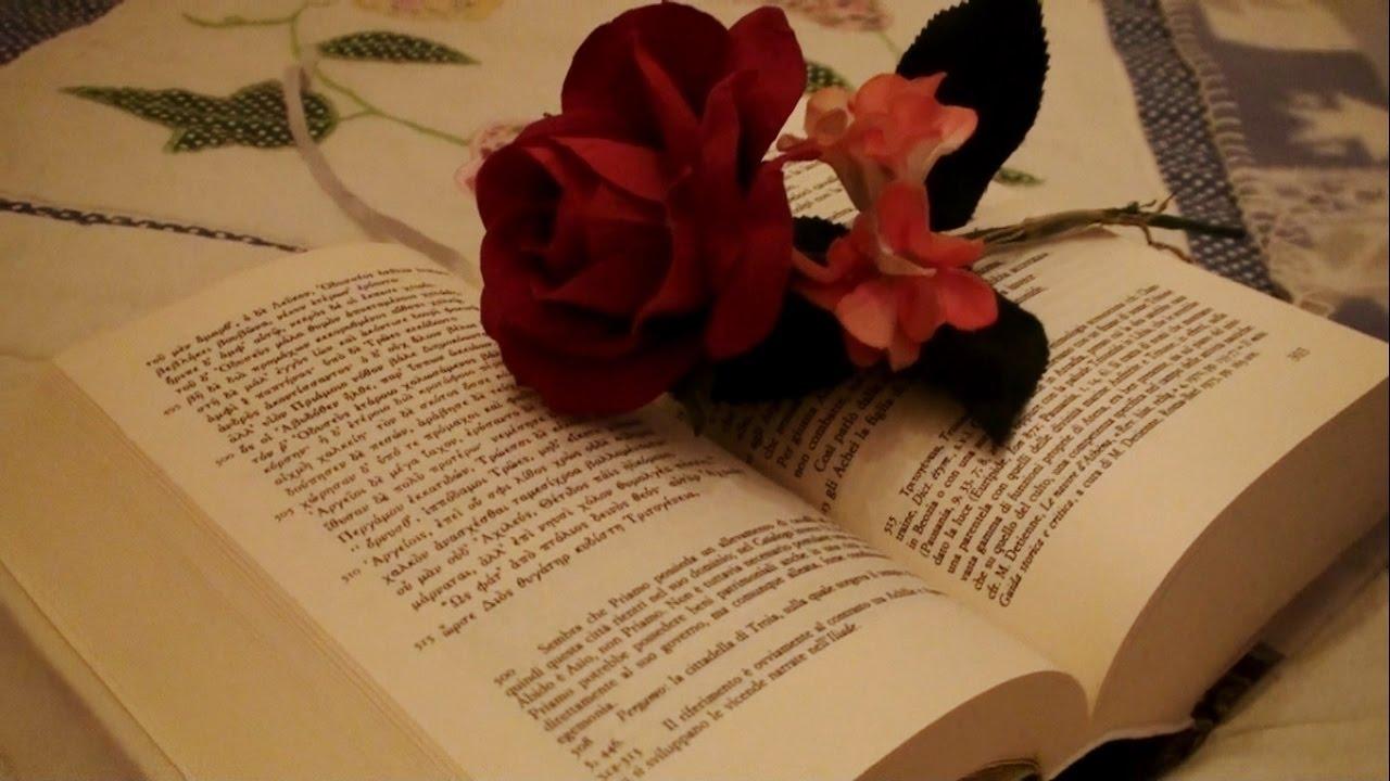 Leggere e sfogliare le pagine di un libro asmr - Pagine di ringraziamento e divertimento ...