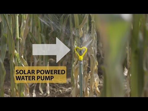 Using the Sun's Power to Help Water Farms in Kenya