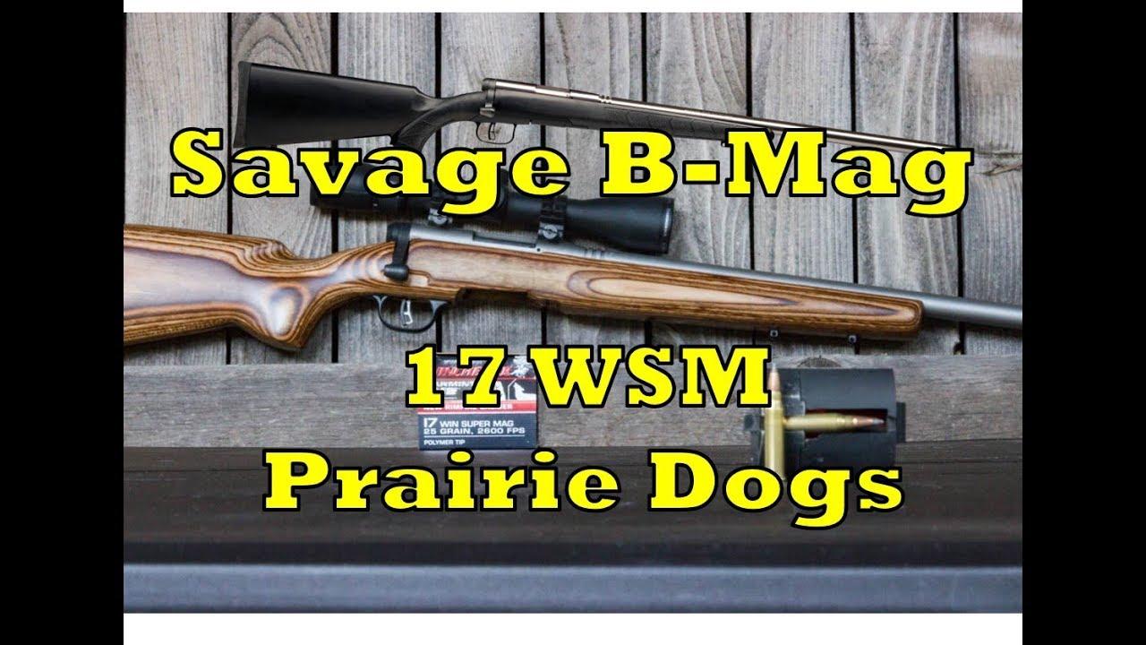 Savage Dog Review
