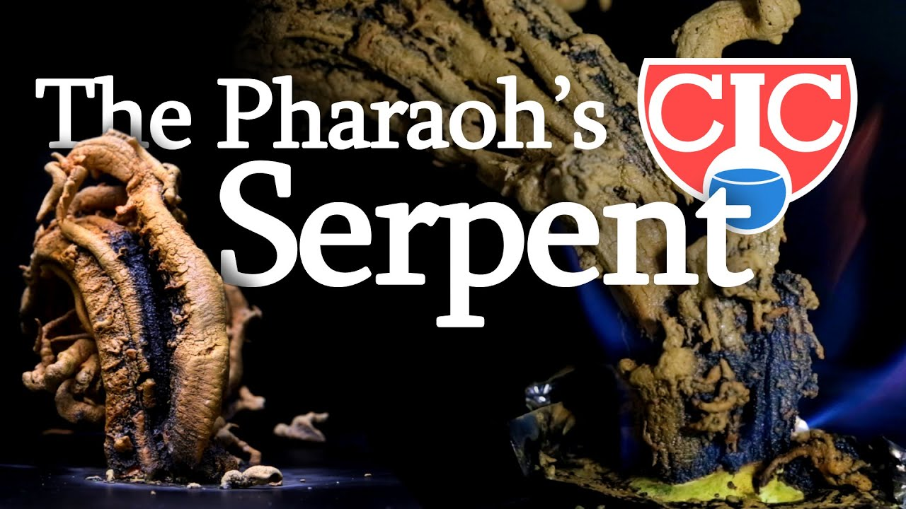 the pharaoh s serpent mercury thiocyanate youtube