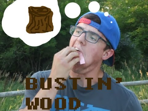 Juss Our Travels - BUSTIN' OUR WOOD