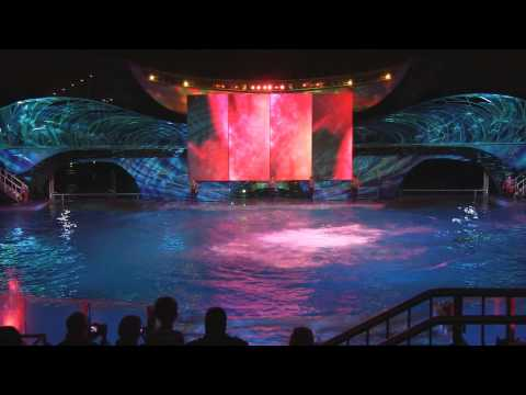 Shamu Rocks 2013 show during Summer Nights at SeaWorld Orlando (Full Show in HD)