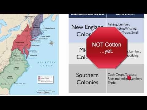 The 13 British Colonies