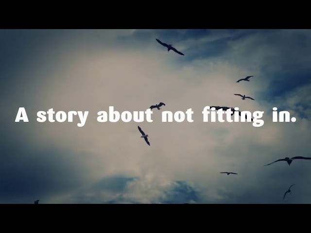 NEJA´S BOOK TRAILER: ELEANOR OLIPHANT IS COMPLETELY FINE