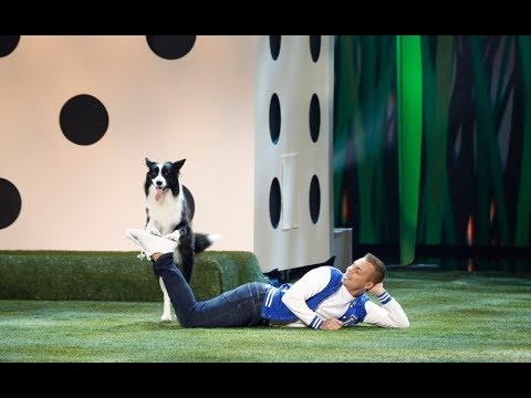 Lukas and Falco  Dog Act  America's Got Talent 2019 Quarterfinals 3