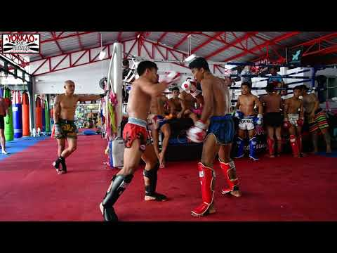 Muay Thai Stars Sparring at YOKKAO - Enjoy the Madness