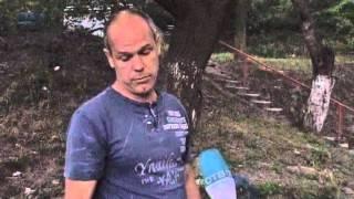 Житель Владивостока обнаружил редкую птицу в собственном дворе
