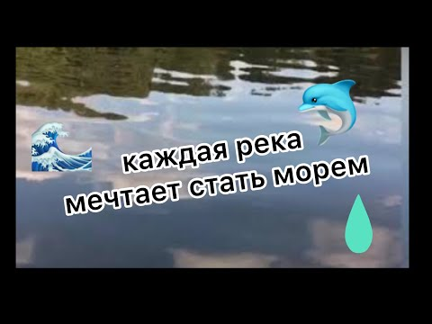 КЛИП:каждая река мечтает стать морем!!!![LISENOK]