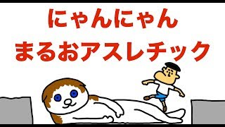 【危険】まるおアスレチック