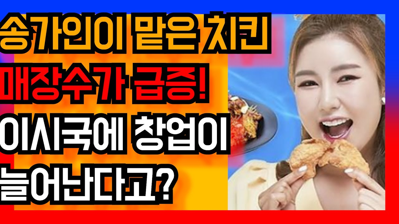 송가인이 맡은 치킨 매장수가 급증하고 있다 이시국에 창업이 늘어난다고? 트로트닷컴