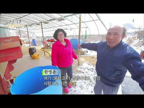 한국기행 - Korea travel_오지, 봄이 오지 2부 고개너머 무릉도원, 돈너미_#001