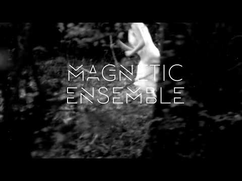 Magnetic Ensemble - 9 juin - La Générale/Paris