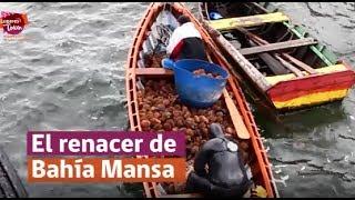 El Renacer de Bahia Mansa