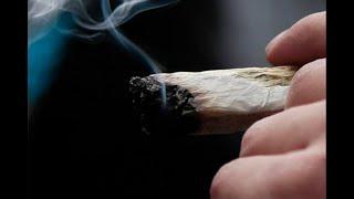"""¿Qué le pasará al quien agarren fumando un """"cachito"""" en el parque?"""