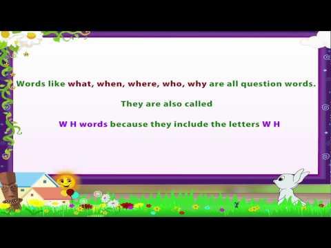 Learn Grade 3 - English Grammar -  Question Words