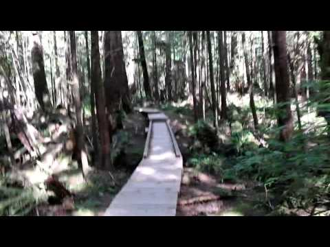 Hiking to Cape Alava, Washington - the Westernmost Point of the Contiguous U.S.