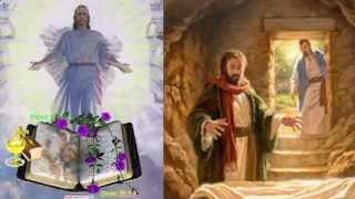 ĐỨC KITÔ ĐÃ SỐNG LẠI THẬT RỒI, ALLELUIA! (CHÚA Phục Sinh năm B)