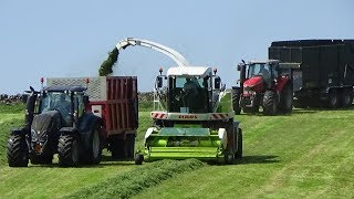 Cumbrian Silage - Lifting 2nd Cut with Claas Jaguar 870 with Valtra, MF & Hurlimann - Silage 2018