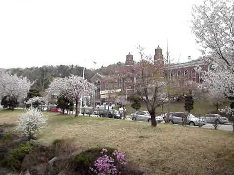 Hankuk University of Foreign Studies, Yongin Campus
