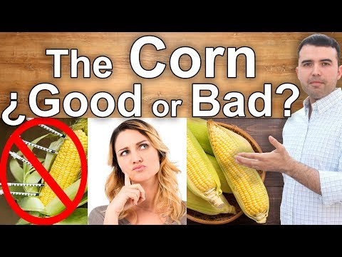 IS CORN HEALTHY? The Dangers and Health Benefits of Corn Best Corn and Who Can Eat It