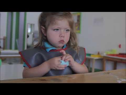 Descargar Video La función social de la escuela