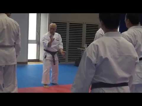 Japan 2012 - JKF Goju Kai Masters Seminar - Akira Shiomi Hanshi 9th Dan (part 1 of 5)