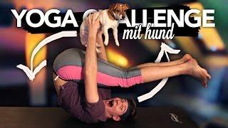 YOGA CHALLENGE MIT MEINEM HUND | Joey's Jungle