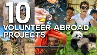 Find easy steps to learn how to Volunteer Abroad